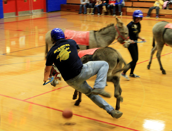 2013 Donkey Basketball
