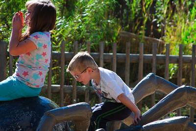 2010 Zoo