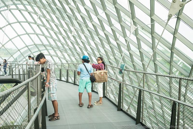 2018-07-18_FunWithFamily@GardensByTheBay_SingaporeSG_43.JPG