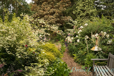 Seasons in the garden