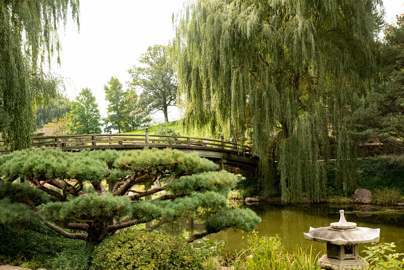 Chicago Botanic Garden 108.jpg