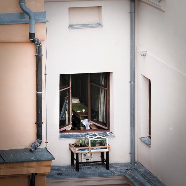 roof-11.jpg