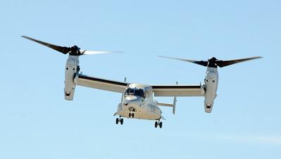 """VMM-166 """"The Sea Elks"""""""