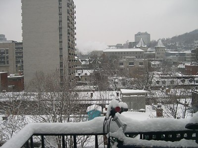 Montreal from my balcony