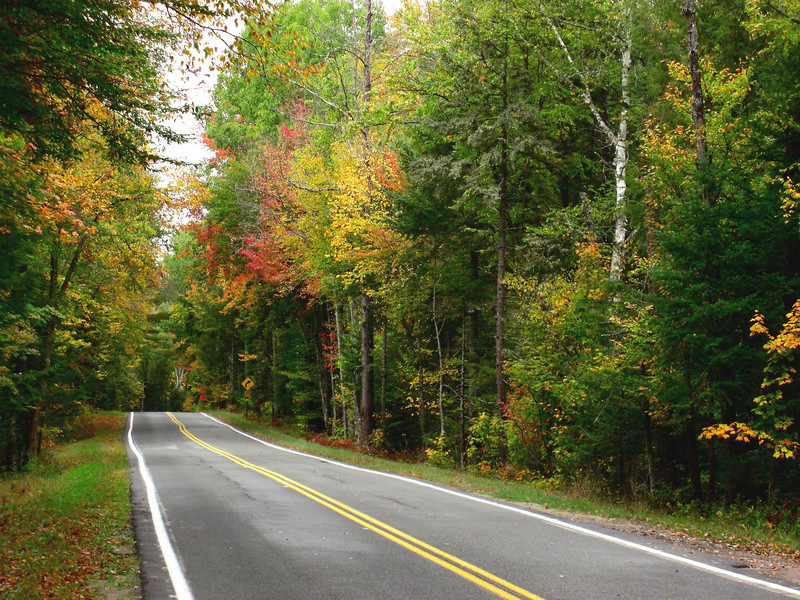 Forest Home Rd -  slight uphill straight  near Lake Clear
