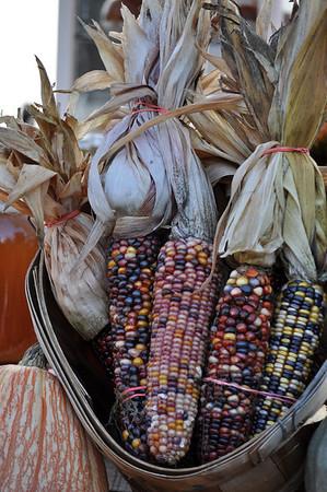 Samhain -Gaelic Harvest Fest. -Fall 2009