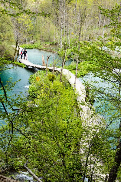A boardwalk hiking path in Plitvice Lakes National Park leads to more waterfalls.