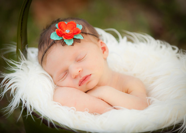 Hope ~ Newborn