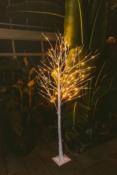 Garfieldpark-conservatory-wedding-215.jpg