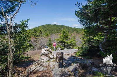 Wicket Visits Emma's Cairn- Belknap-Gunstock-Rowe 5-16-17