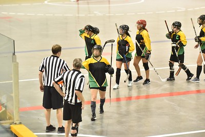 2019-07-13 WC Amazons at BC Womens Ball Hockey Championships