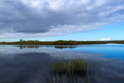 20th Annual Everglades Day