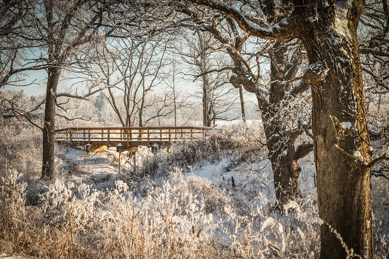WI Winter Landscapes