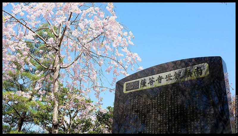 Kiyomizu-dera 5th April 2013 Kyoto, Japan