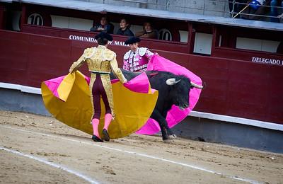 Madrid: Bullfight