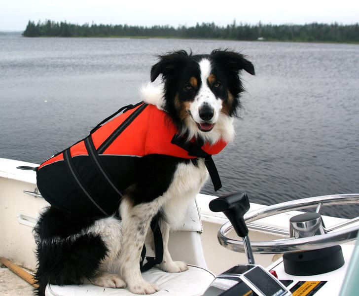 Captain Jay (Jul 11)