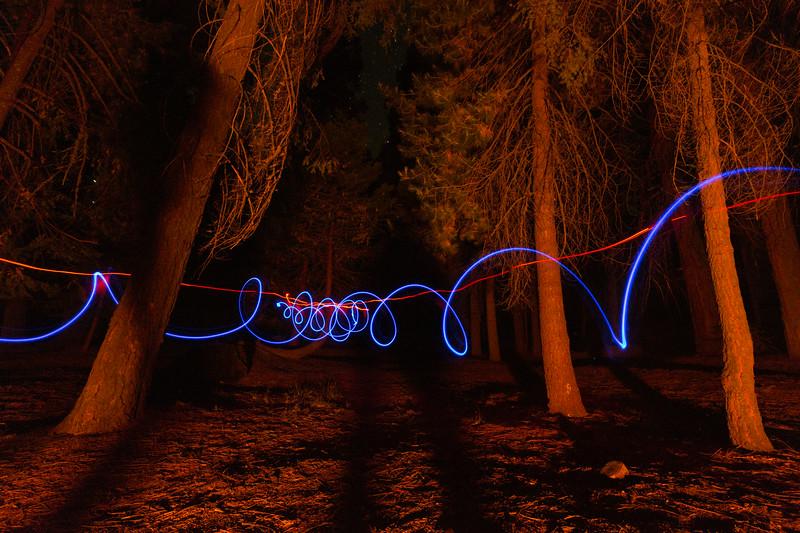 Sequoia_0843.jpg