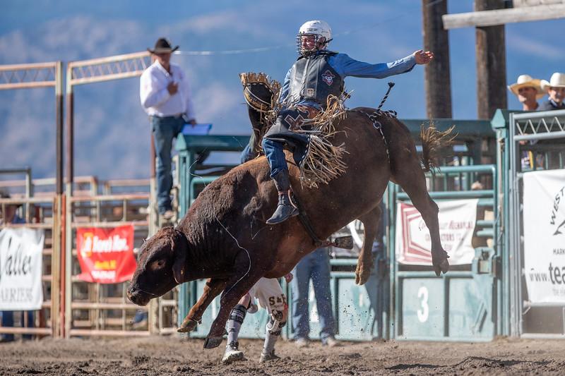 2019 Rodeo 3 (1108 of 1306).jpg