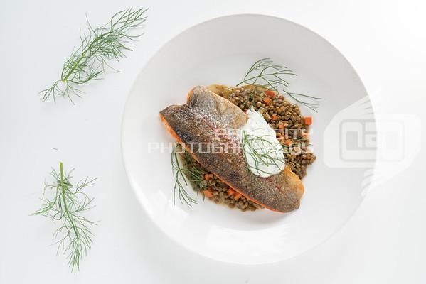 Twisted Fern Trout