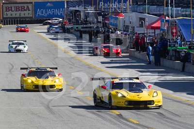 2017 IMSA Continental Tire Monterey GP