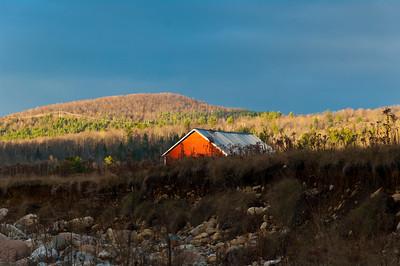 Evening Song Farm 2013