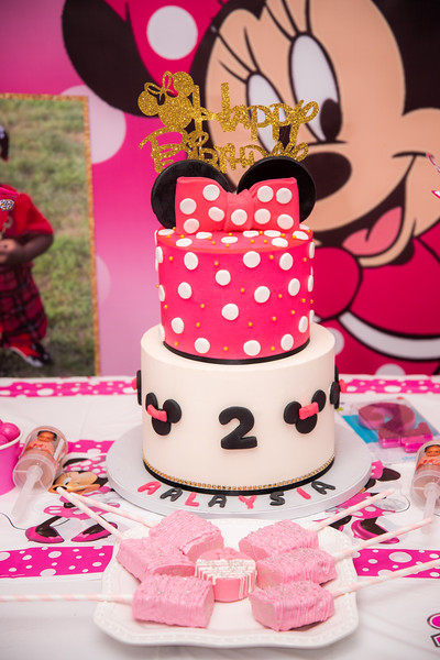 Aalaysia's 2nd Birthday Party