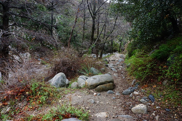 2016-02-18 - Gabrielino Trail hike through Arroyo Seco Canyon