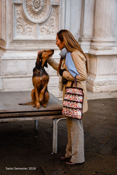 Ms. Brouillac greeting a furry friend in Venice