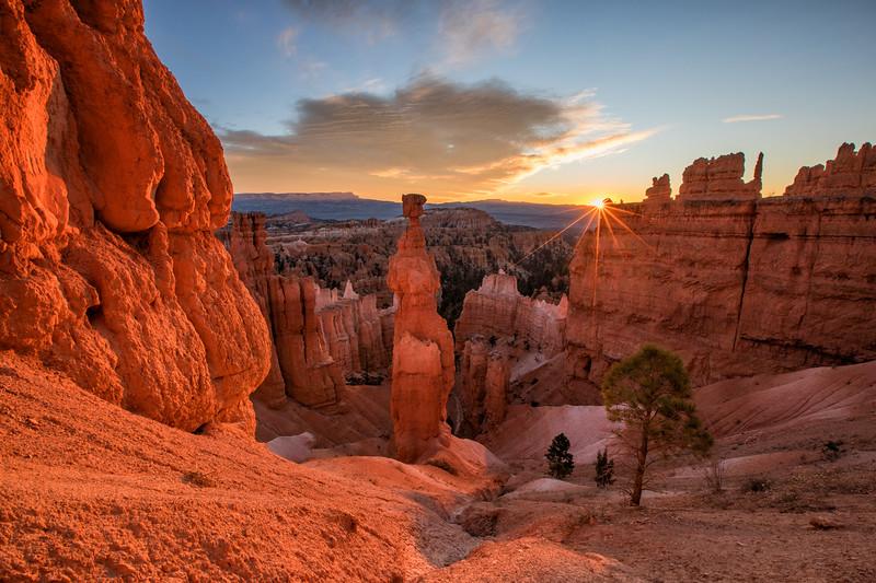 WVWS_Bryce Canyon--4.jpg