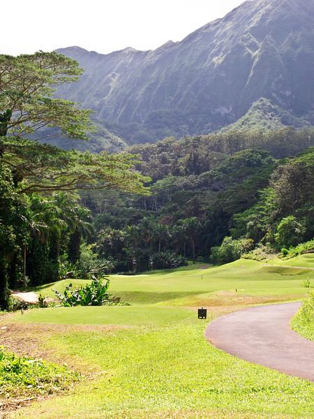 golf honolulu 2011 - 012.jpg