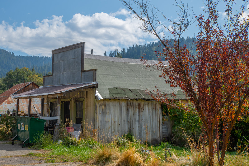 20191003Plumas County Day FourDSC_7826.jpg