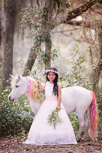 Unicorns March 2019 - Volel