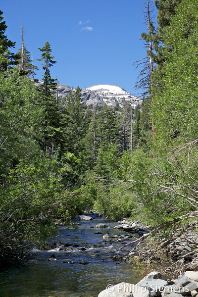Glen Alpine Creek