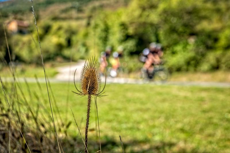 3tourschalenge-Vuelta-2017-554-Edit.jpg