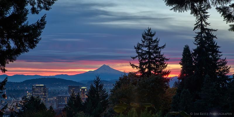 Sunrise in Portland, view from International Rose Garden