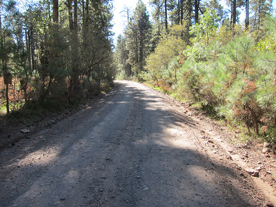 Mogollon Rim Road
