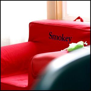 Smokey's window seat