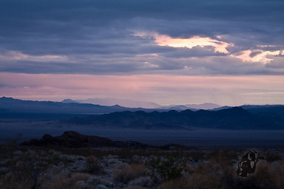 12/7/08 Desert Travels