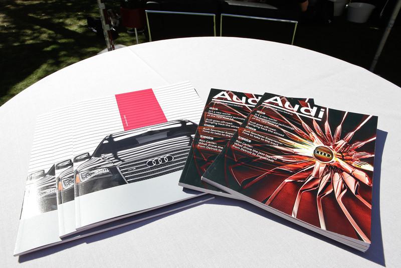 Audi-11.jpg