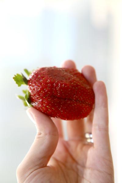 StrawberryInHand.jpg