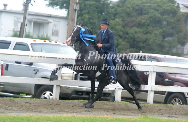 CLASS 4  AMATEUR OWNED & TRAINED SPECIALTY