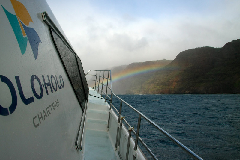 Holo-Holo boat trip. This was supposed to be a trip up the Na'Pali coast, but being winter, the seas were too rough along the northwestern shore so we had to turn back.  So, we ended up just whale-watching...pretty good consolation prize!