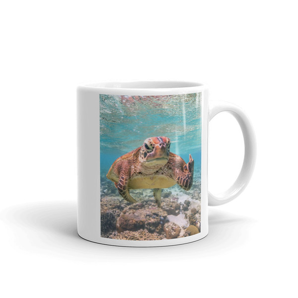 Terry the Turtle mug 1.jpg