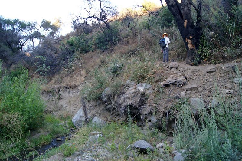 20110825023-El Prieto Trailwork Banner.JPG
