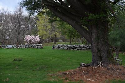Engagement Park #2