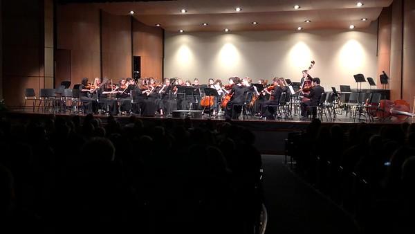 Cat Concert Spring 2019 - iPhone Video