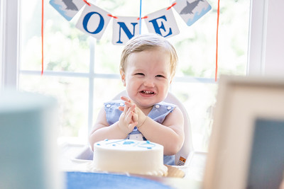 Clay's First Birthday Party