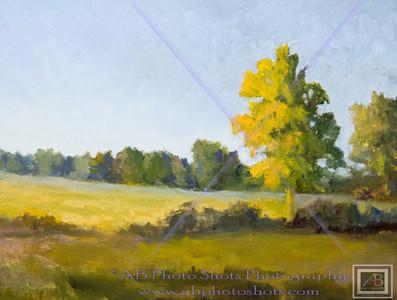 Liz's Painting