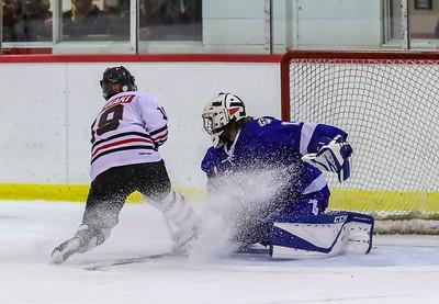 2018 - 2019 GMHL Hockey Season