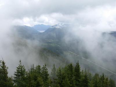 Olympic National Forest June 25, 2011